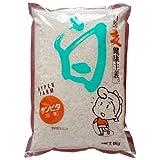 Ishibashi industrial Sanbita (Shiromugi Bitabaare) 1kgX12 bags