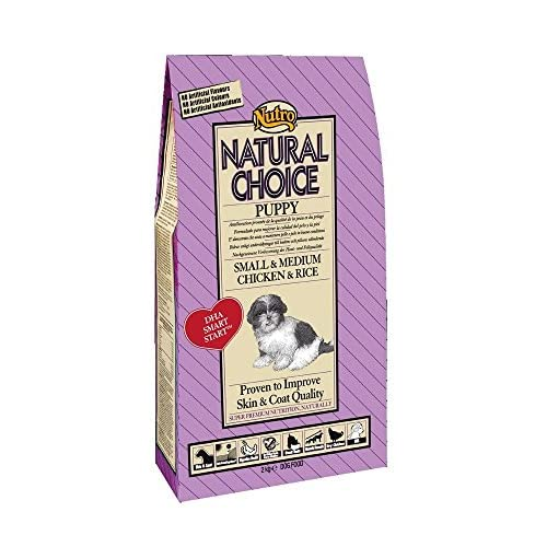 Petacc Gamelle Haute pour Chat et Petit Chien Gamelle Chat//Chien Inox avec Support en Bambou 3 Bol