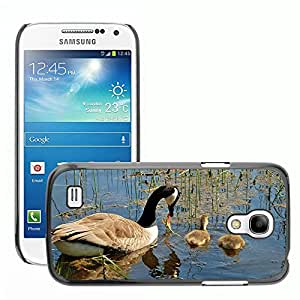 Super Stellar Slim PC Hard Case Cover Skin Armor Shell Protection // M00125628 Canada Goose Branta Canadensis Swan // Samsung Galaxy S4 Mini i9190