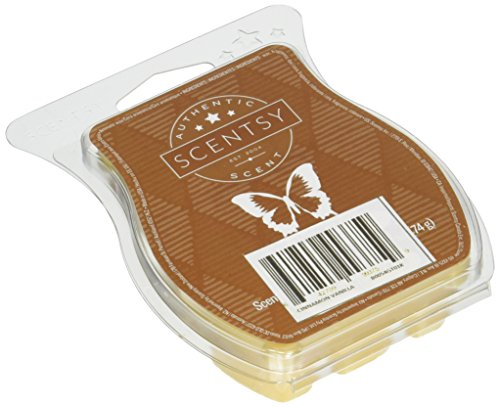 Scentsy Cinnamon Vanilla Wickless Candle