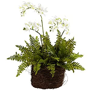 Nearly Natural 4834 Phalaenopsis Orchid and Fern with Birdsnest Planter, Mini 41