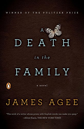 A Death in the Family: A Novel