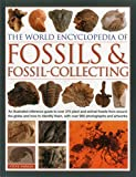 The World Encyclopedia of Fossils & Fossil-Collecting:: An Illustrated Reference Guide To Over 375 Plant And Animal Fossils From Around The Globe And How To Identify Them, With Over 950 Photographs And Artworks