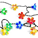 Outdoor Solar Powered String Lights,easyDecor Flower 8 Modes 50 LED 23ft Multi-color Waterproof Seasonal Decorative...