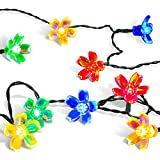 Solar Christmas String Lights,easyDecor 50 LED Flower 23ft - Best Reviews Guide