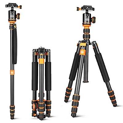 G-raphy Camera Tripod Travel Tripod Portable Detachable Monopod for DSLR Canon Nikon Pentax