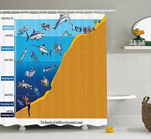 [Ocean Animal Decor Shower Curtain Region with Shark Octopus Jellyfish Squid Predators Graphic Nature Art Fabric Bathroom Decor Set with Hooks Blue] (Squid Costume Ebay)
