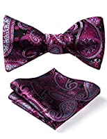 HISDERN Men's Paisley Jacquard Wedding Party Self Bow Tie Pocket Square Set
