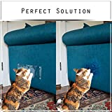 Cat Scratching Furniture Protection –  P-TAC PET SHIELD – Anti Scratch Pet Guard – Uses Soft-Forma Technology to Hug The Edges of Your Couch –  Two Guards Included (12″ x 5.5″) For Sale