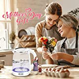 Habor Electric kettle, Water Boiler 1500W Fast