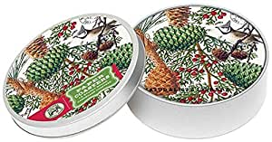 Michel Design Works 12 Count Spruce Coasters in Tin, Green