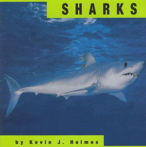Sharks (Animals)