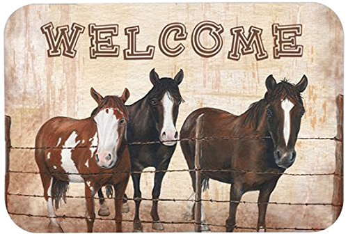 Caroline's Treasures SB3059CMT'Welcome' Mat, 20' by 30', Multicolor