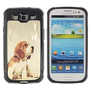 ZETECH CASES / Samsung Galaxy S3 I9300 / BEAGLE FOXHOUND PUPPY BABY DOG / beagle foxhound cachorro bebé perro / Robusto Caso Carcaso Billetera Shell Armor Funda Case Cover Slim Armor