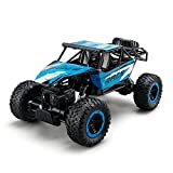 ToyPark Remote Control Cars, RC Rock Off-Road Vehicle 2.4Ghz 4WD Fast Speed Racing Cars