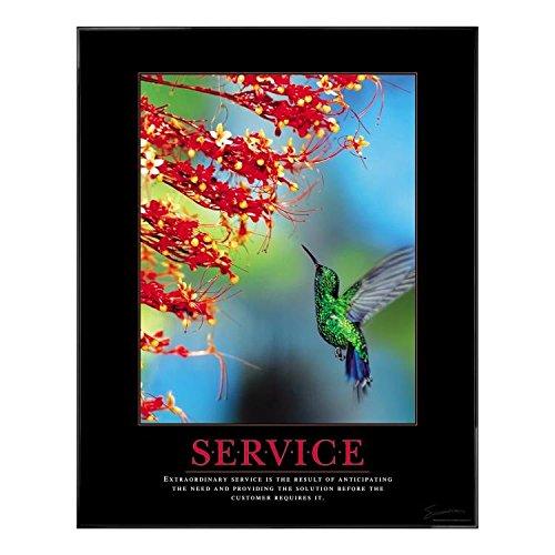 Successories .25 in. Black Aluminum Frame, No Mats - Service Hummingbird Motivational Poster