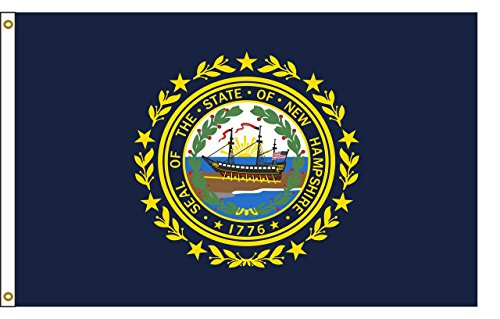 New Hampshire 5ftx8ft Nylon State Flag 5x8 Made In USA 5'x8'