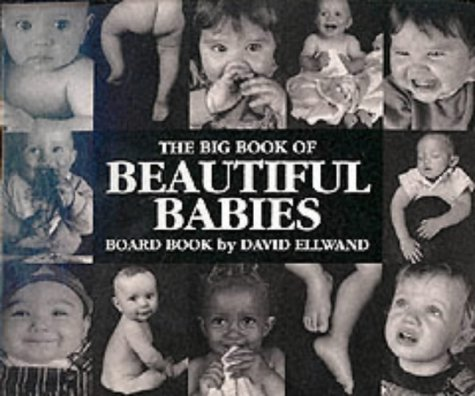 Read Online Big Book of Beautiful Babies pdf epub
