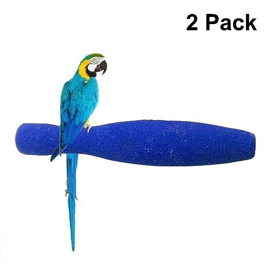 Showzon - Jaula para pájaros con Forma de Barra de Arena: Amazon ...