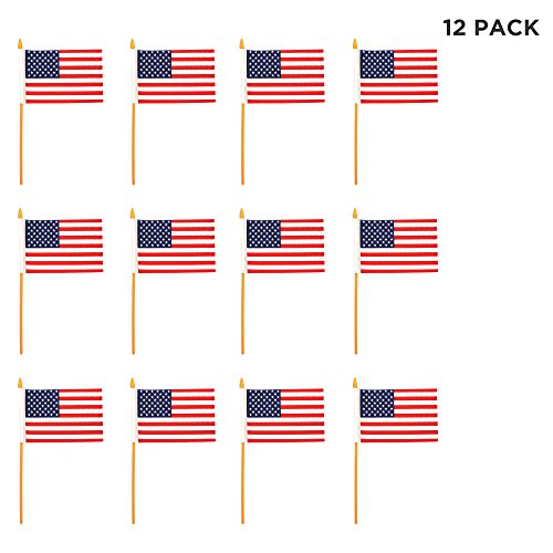 Windy City Novelties (12 Pack) Mini American Flags on Sticks 4 inches x 6 inches