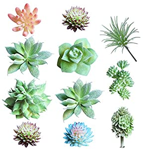 Sunm boutique 10 Pcs Unpotted Artificial Succulents Assorted Faux Succulent in Different Green Hanging for Home Wedding Centerpieces 44