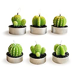 Luvu Cactus Candles, Mini Cute Tealight Candles for Home, Decor, Gift, Birthday, Party 6 Pcs