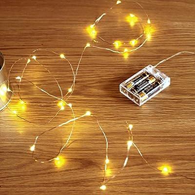 GardenDecor Led String Lights 50 Leds Decorative Fairy Battery Powered String Lights, Copper Wire light for Bedroom,Wedding(16ft/5m Warm White)