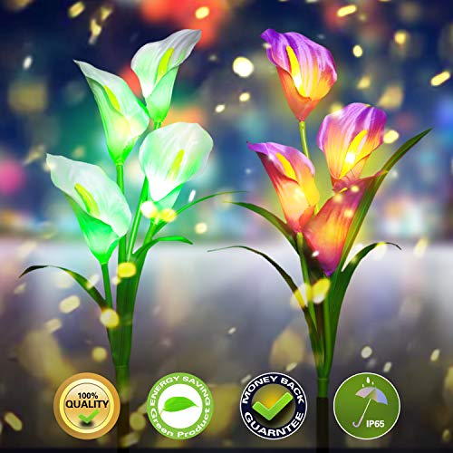 Solar Garden Lights Outdoor Decorations LED Solar Lights Garden Decorative for Patio Yard Backyard Path Garden Decor Gardening Gifts, 2 Packs