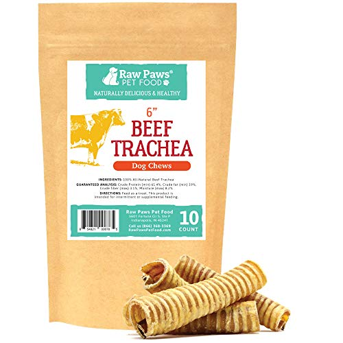 (Raw Paws 6-inch Beef Trachea Dog Chews, 10 Pack - Packed in USA - Dehydrated Beef Trachea for Dogs from Free-Range, Grass-Fed Cows with no Antibiotics or Hormones, Healthy Rawhide Alternative for Dogs)