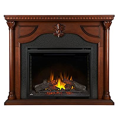 Napoleon Aden Fireplace Package