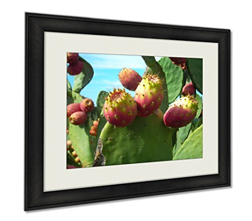 Ashley Framed Prints Prickly Pear Cactus Fruit, Wall Art Home Decoration, Color, 26x30 (frame size), AG6082399 by Ashley Framed Prints