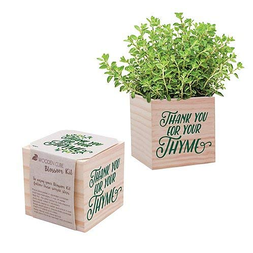 Real Desk Plant for The Office - Thyme Plant Seed Packet, Peat Pellet, and Natural Pine Wooden 3x3 inch Cube Planter - Employee Appreciation Gift -
