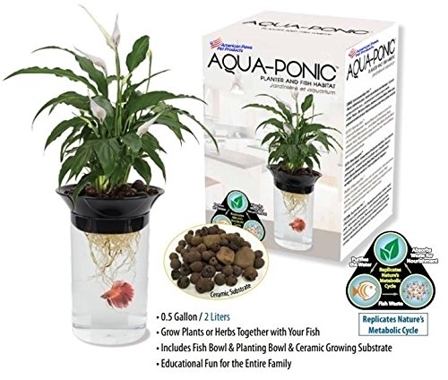 Aquaponic Fish Tank Aquarium for Betta Fish & Gold Fish with Water Garden Planter Top Lid by American Paws Pet Products