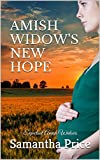 Free eBook - Amish Widow s New Hope