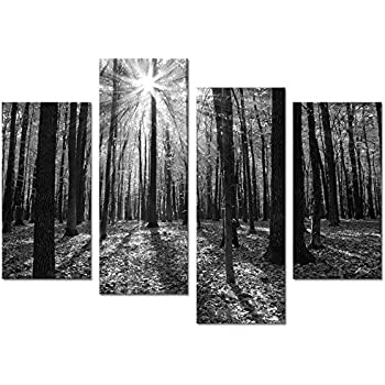 Visual art decor giclee canvas prints wall art black and white forest in mild sunshine nature
