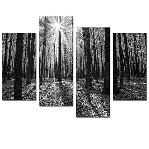 Nature Landscape Pictures (Visual Art Decor Giclee Canvas Prints Wall Art Black and White Forest in Mild Sunshine Nature Landscape Picture Painting Printed on Canvas Ready to Hang Large Wall Decor)