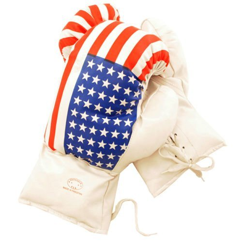 AGE 6-8 KIDS 6 OZ BOXING GLOVES YOUTH PRACTICE TRAINING MMA American USA ()