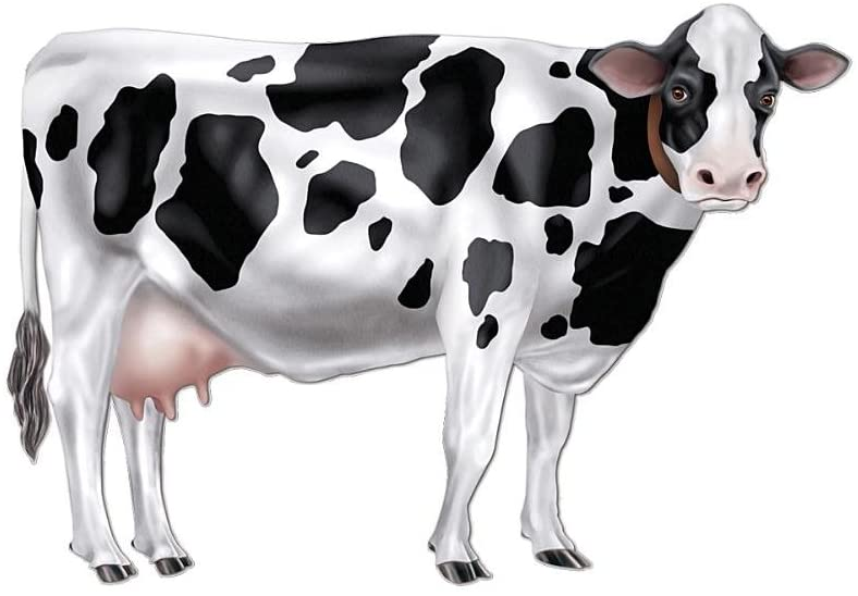 Expedition Norway Paper Cow Decoration 30 Long