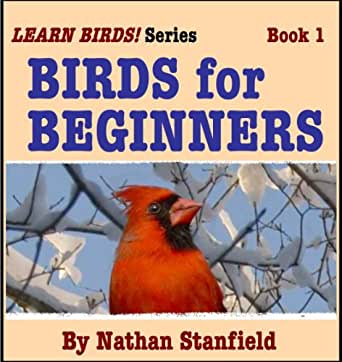 The 12 Best Books About Birds And Birding Of 2017 - Forbes
