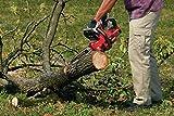 CRAFTSMAN V20 Cordless Chainsaw, 12-Inch