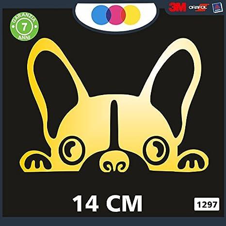 Pegatina para Coche/ /Perro Stickers Coche/ Stickers Pegatinas Perros /Stickers Notebook/ Decal Cod 1297 Negro Perros /Color Negro/ /Bulldog franc/és/ /Accesorios