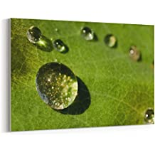 Westlake Art - Canvas Print Wall Art - Water Dew on Canvas Stretched Gallery Wrap - Modern Picture Photography Artwork - Ready to Hang - 18x12in (*7x-0c4-f20)