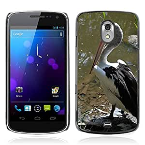 Hot Style Cell Phone PC Hard Case Cover // M00108303 Pelicans Birds Water Ponds Black // Samsung Galaxy Nexus GT-i9250 i9250