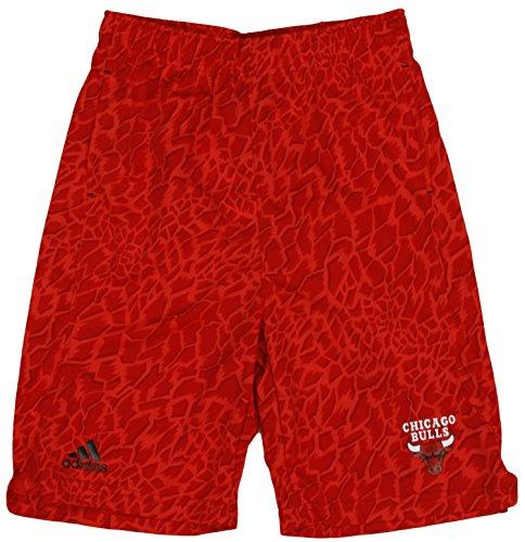 adidas Chicago Bulls NBA Big Boys Youth Crazy Light Swingman Shorts, Red (Red, Large - Adidas Shorts Swingman