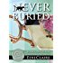Never Buried: Volume 1 (Leigh Koslow Mystery Series)