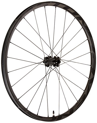 Easton Carbon Wheel - Easton Haven Carbon Mountain Wheels, Black, 20x100 29-Inch Front