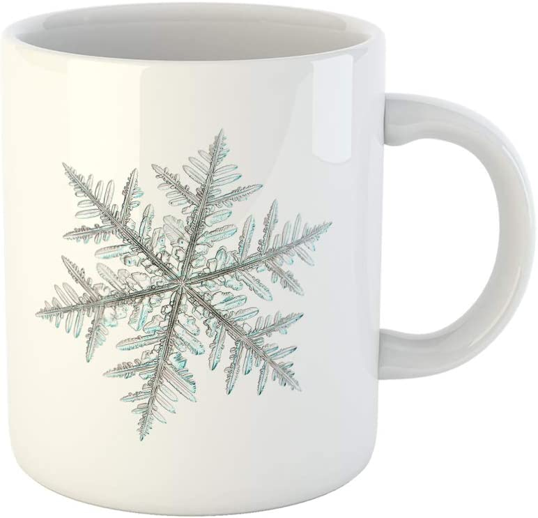 Amazon Com Topyee 11 Oz Coffee Mug Real Snowflake Photo Single Stellar Dendrite Crystal Is Olated On White Ceramic Tea Cup Mugs Birthday Holiday Gift Or Souvenir For Family Friends Kitchen Dining