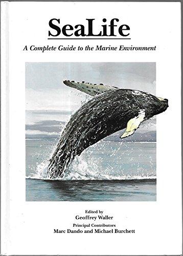 sealife 1000 - 1