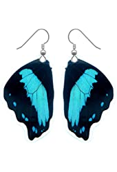 Real Butterfly Wing Earrings - Papilio Neirus Bottom Wing