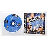 WCW vs. NWO: Thunder - PlayStation